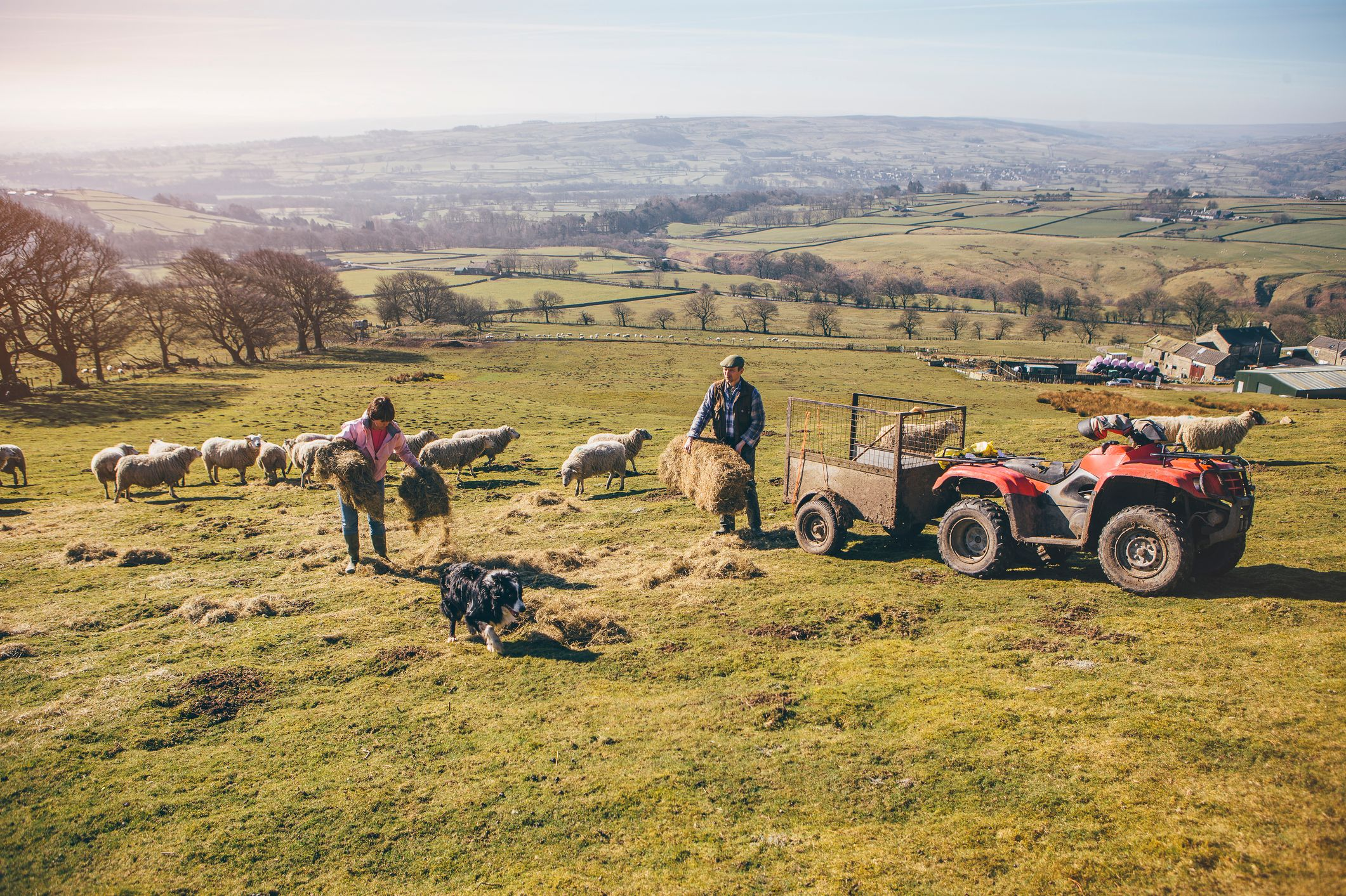 Working in the rural sector can be a hazardous business